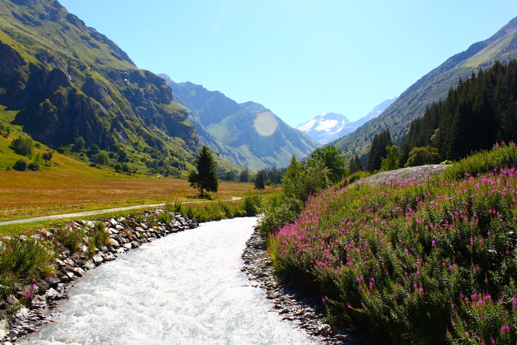 Hiking French Alps river flowers mountain views