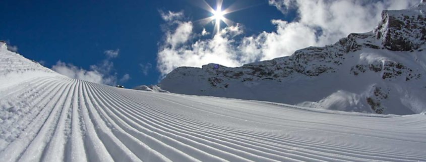 skiing la tania for beginners ski dazzle